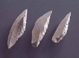 中学受験・歴史 旧石器~縄文時代の基礎知識、忘れていませんか?